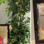 Enterprising Woman of the Year Award